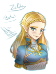 Princess Zelda - BOTW by Kiumii