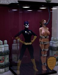 Batgirl Trophy Case by thejpeger