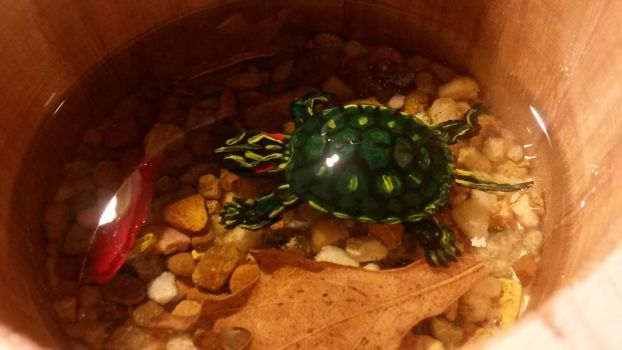 resin turtle by SpudaFett