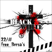Black + White Brush's by Chimik