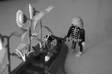 Skeletons can have a garden, too... by midnight-loki