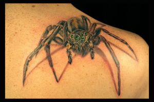 Spider Tattoo by TodoArtist