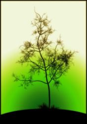 green tree by madmike1982