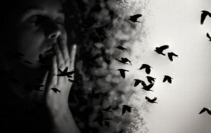 Birds and dreams fly away by let-it-di