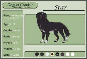Dogs of Canidale: Star Application by FrostedCanid