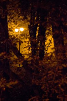 Nightwalk by TriwioMegram