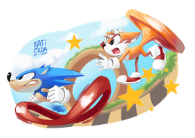 Happy 26th Birthday, Sonic! by Natizilda