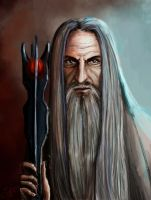 Lord of Isengard by Neriely
