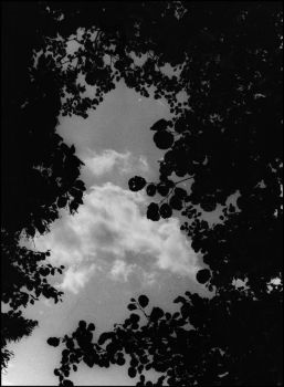 Look Into The Sky by Aystein