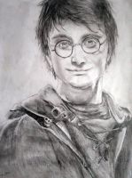 Harry Potter by SFrostWing