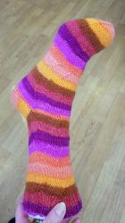 Ginny's everyday sock - Ysock by KnitLizzy