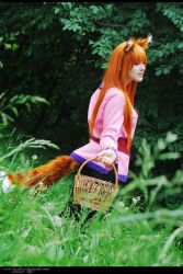 Spice and Wolf 3 by Eletiel