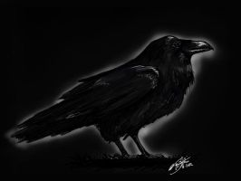 Raven by KnifeInToaster