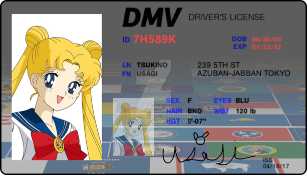 Usagi's drivers license by Mikey186