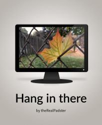 Hang in there by theRealPadster