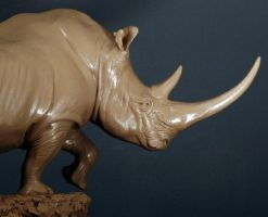 White Rhino in clay by JordanAbernethy