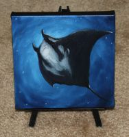 Blue Manta by crazycolleeny