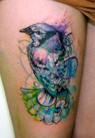 watercolor bird by koraykaragozler