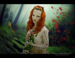 Lost in WonDerLand by Doucesse