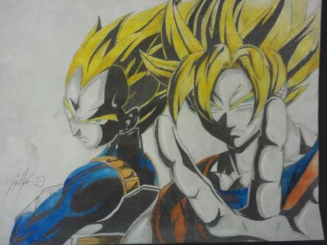 Goku and Vegeta DBZ by HasanHanzo