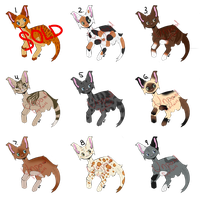 15 POINT ADOPTS - 7/9 OPEN by Fox-Lairs
