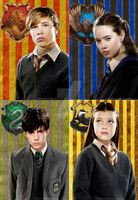 Narnia goes Harry Potter by Lily-so-sweet