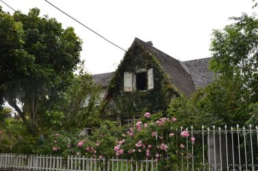Old City house in a flowery garden to Cilaos by A1Z2E3R