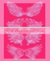 Wings Photoshop Brushes Set 2 by Coby17