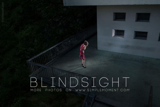Blindsight 2 by jsmonzani