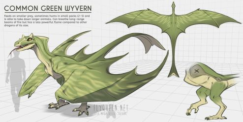 Common Green Wyvern by FlyQueen