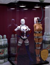 Harley Quinn Trophy Case by thejpeger