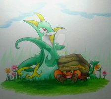 Serperior and Crustle