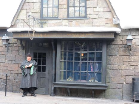 hogsmeade village diagonally harry potter by Sceptre63