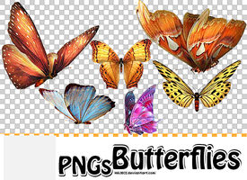 PNGs Butterflies by HAJECI