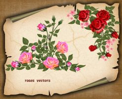Roses Vector by roula33