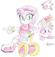 Amy Rose, SSBB-moves by CyberMaroon