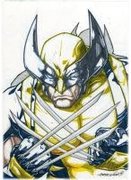 Wolvie (markers) by emmshin