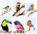 Birds - CG watercolor by Hangmoon
