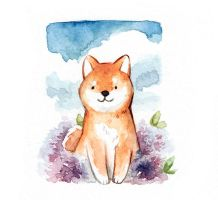 Shiba and clouds by Dunicakes