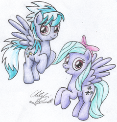 Flitter and Cloudchaser by wildtiel