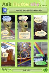 Ask Brushable Fluttershy - Q2 - Rainbows by dutchscout