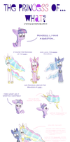 The Princess Of...What? by DarkestSunset
