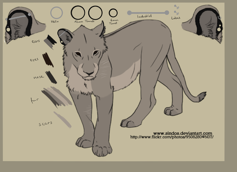 Ref Sheet Tawa December 2014 by Tawas
