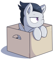 Rumble in a box by Lemanda