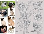 .Pug Dragon (sketch, concept) by iLDS