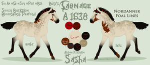 A1638 BuD's Carnage - foal design by GuardianOfJay