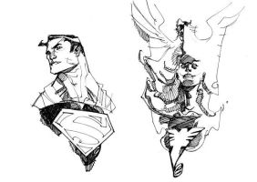 SUPERMAN and PHOENIX by EricCanete