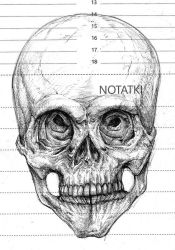 Skull sketch by Kordian678