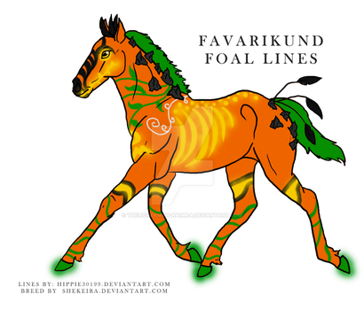 577 Favarikund Foal Design