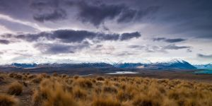 Lake Alexandrina from Mt John by Niv24